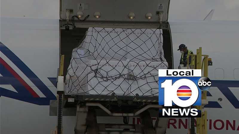 Local 10 Coverage Image